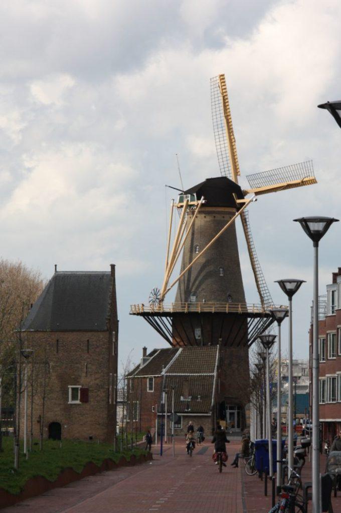 Die Muehle de Roos in Delft