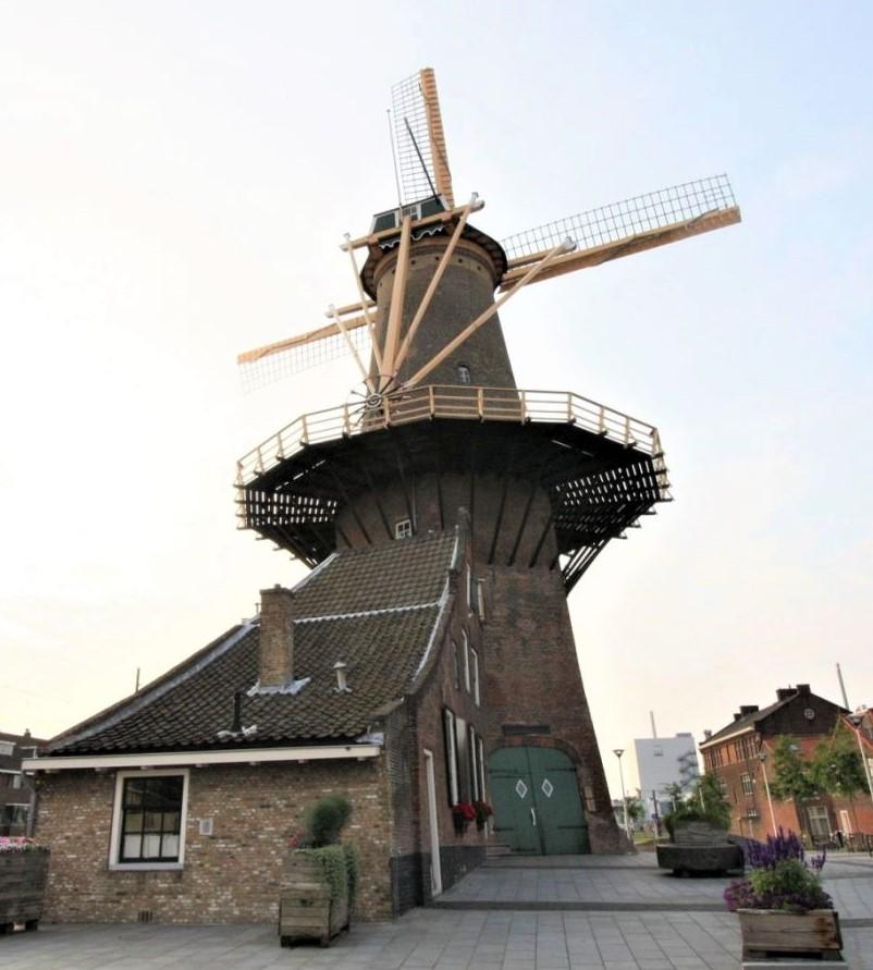 Die Muehle de Roos mit dem Muehlhaus in Delft