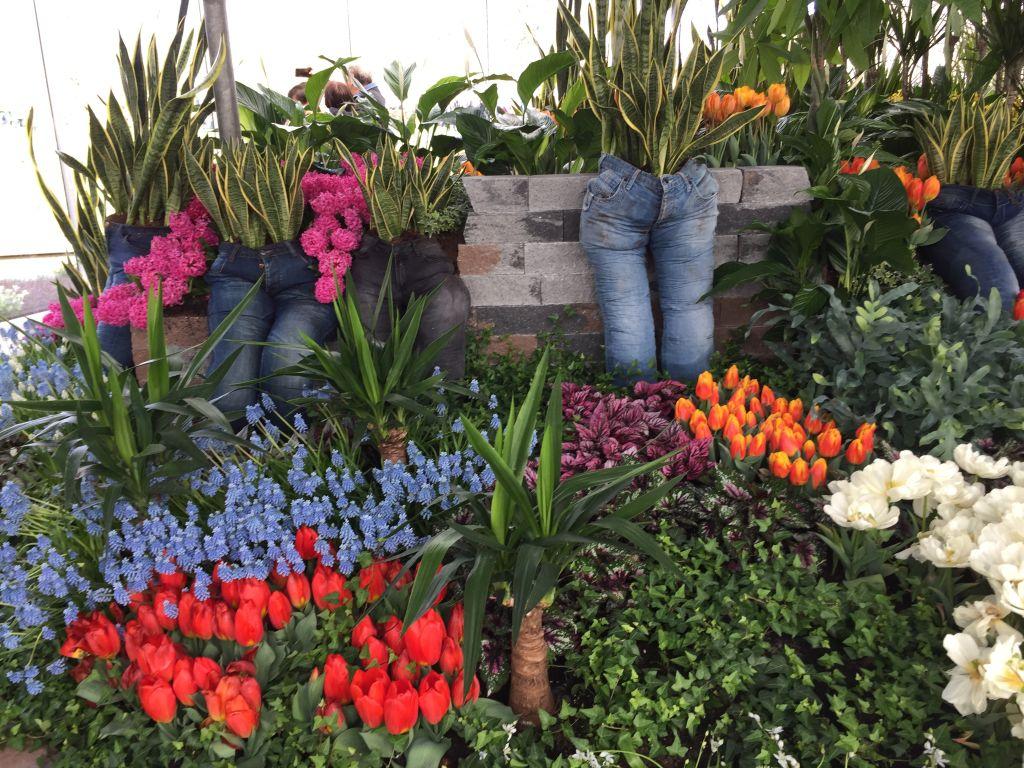 innovative Gartengestaltung im Keukenhof bei Amsterdam