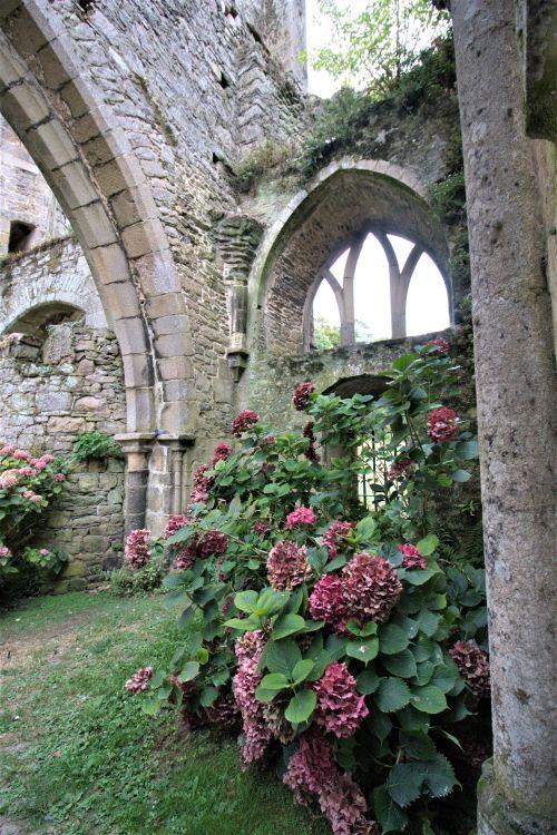 Ruine der Abteikirche von Beauport an der Cotes d'Armor