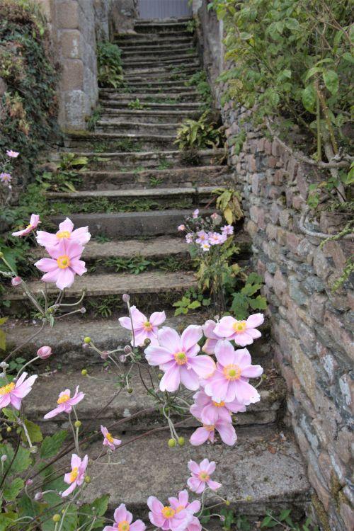Treppe zum ehemaligen Schlafsaal der Abtei von Beauport an der Cotes d'Armor