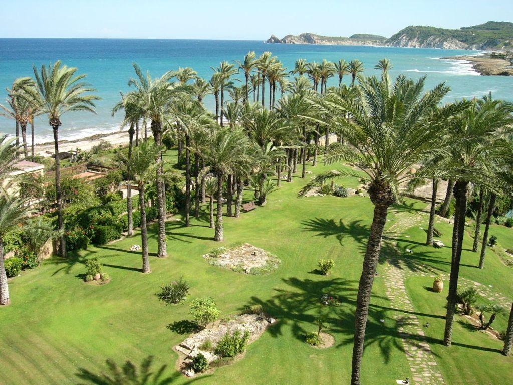 Palmengarten und Mittelmeer im Hintergrund bei Jávea, Spanien