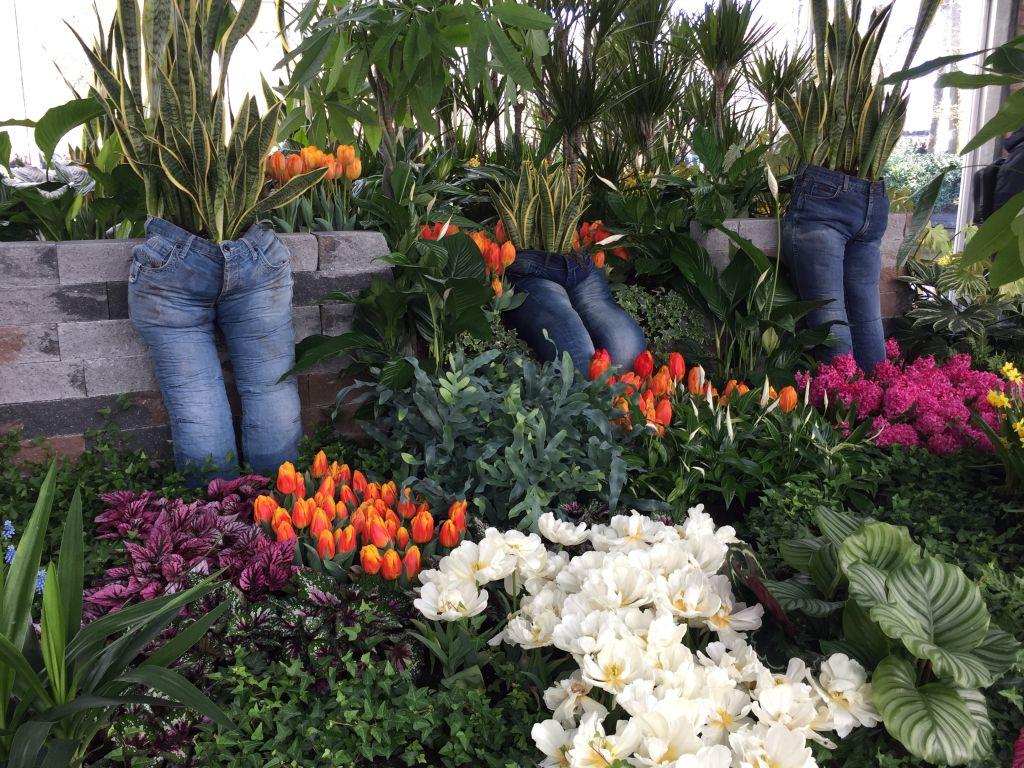 Jeans als Blumentoepfe; Flower-Power im keukenhof