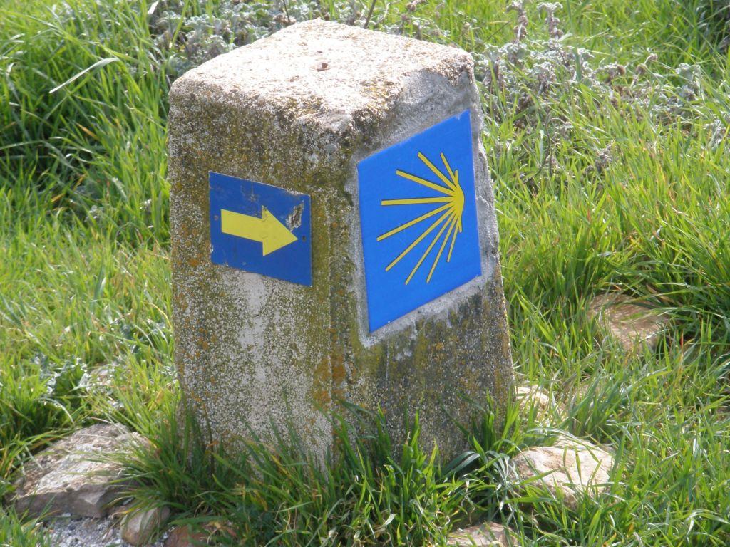 Wegweiser gelber Pfeil auf blauem Grund und das Symbol des Jakobswegs auf einem Stein am Wegrand