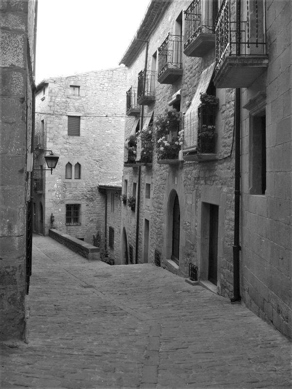 Altstadtgasse mit Pflastersteinen in Sos del Rey Católico in Aragón