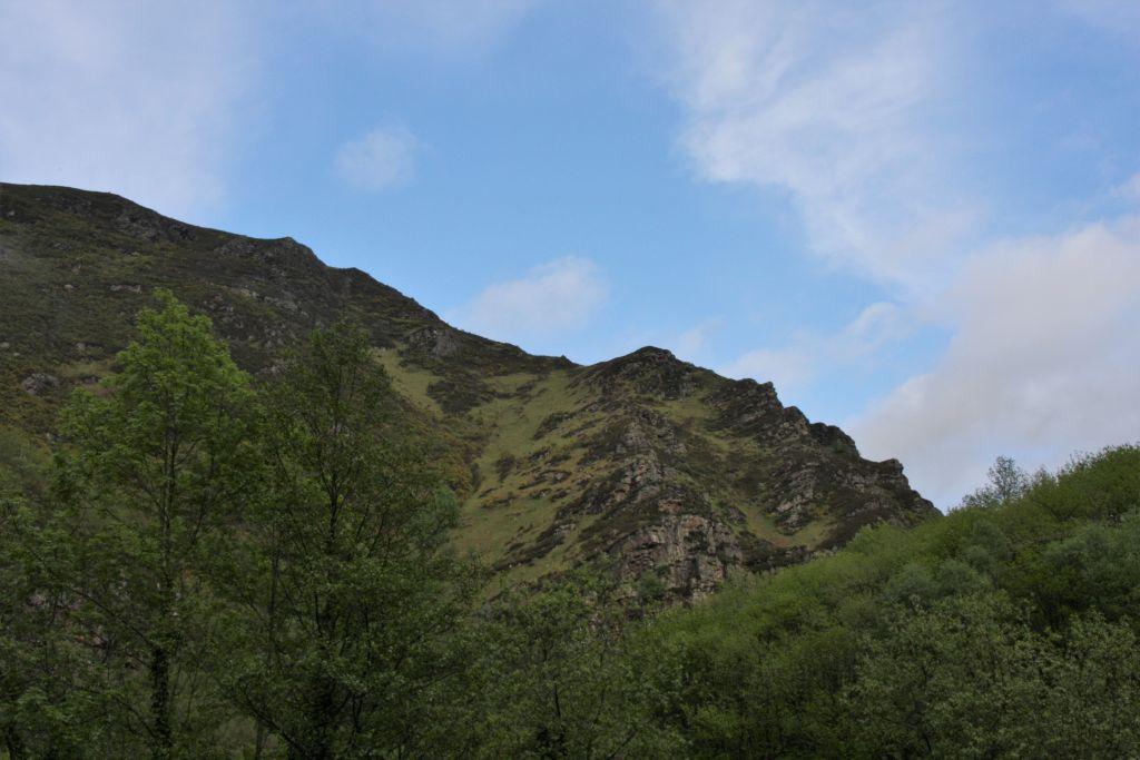 Bewaldeter Bergruecken in den spanischen Pyeraeen