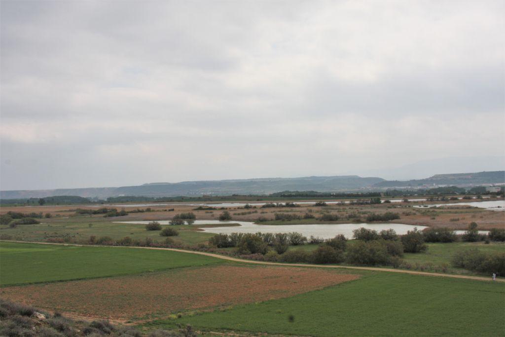 Naturreservat Laguna Las Cañas in der Naehe von Viana