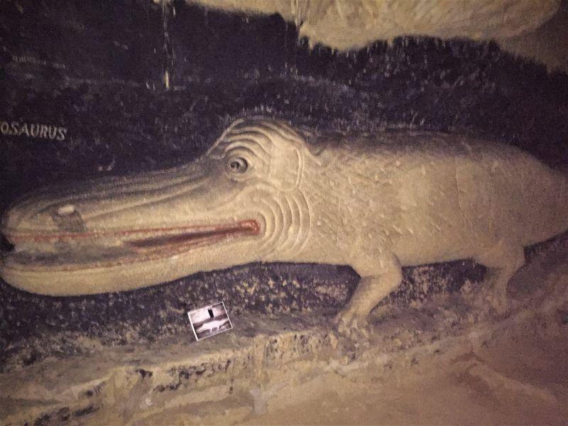 Bild eines Mosasauriers auf der Mergelwand der Fluweelengrotte in Valkenburg