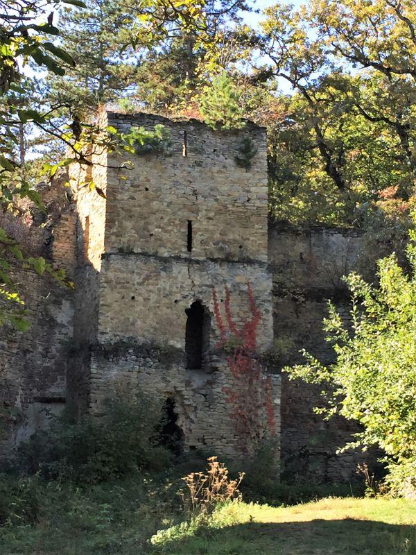 Turmruine auf der Bauernburg von Keisd / Saschiz in Siebenbuergen