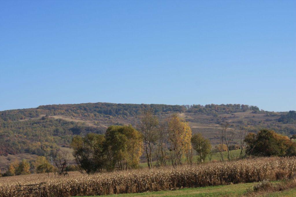 Siebenbuergische Landschaft in der Naehe von Klosdorf / Cloaşterf
