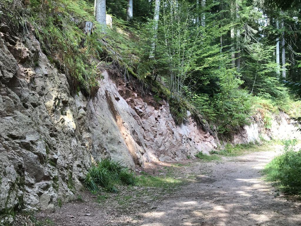 Felswand entlang des Rundwegs zum Geroldsauer Wasserfall