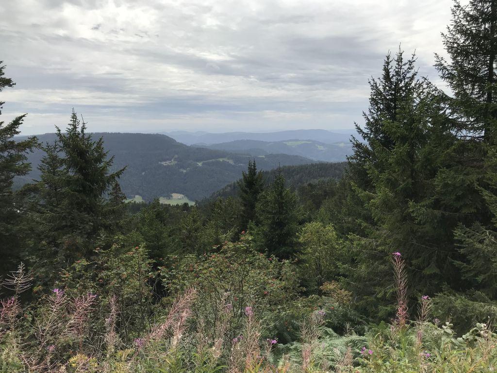 Blick von der Hornisgrinde, dem höchsten Berg des Nordschwarzwalds