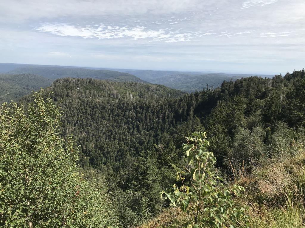 Blick von der Hornisgrinde, dem höchsten Berg des Nordschwarzwalds in den Bibertalkessel