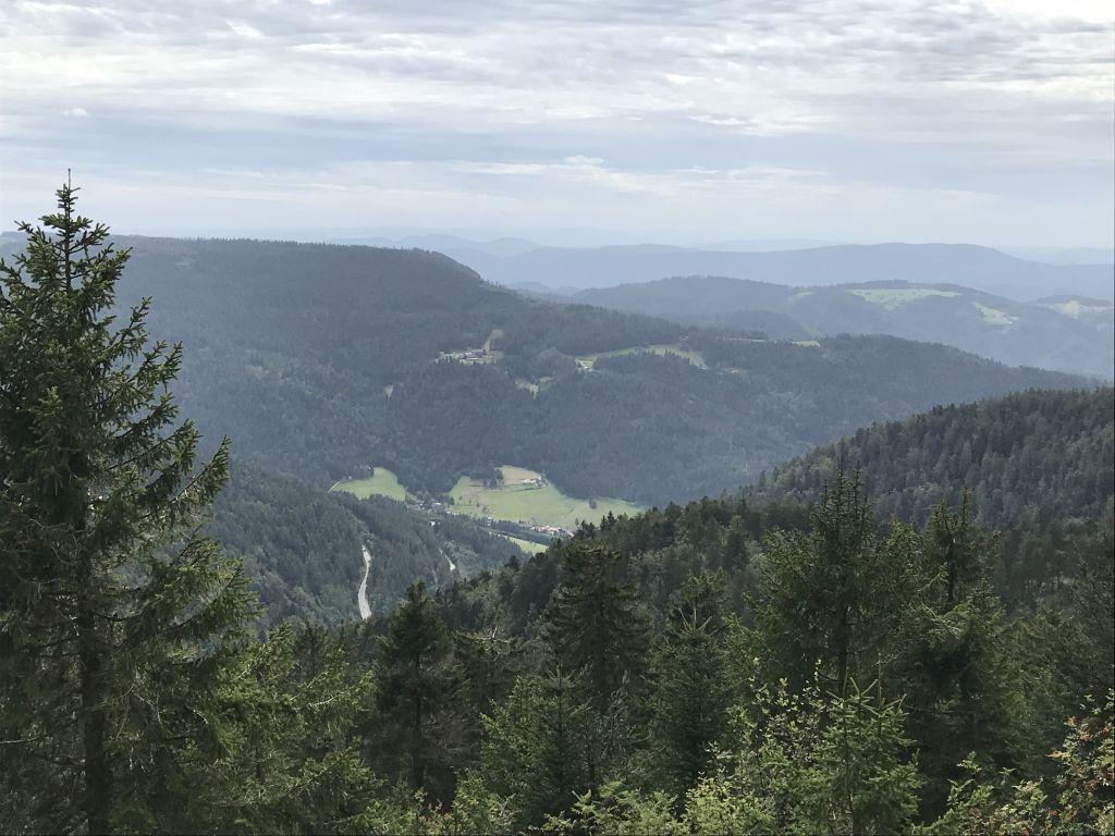 Blick in den Biberkessel vom Gipfel der Hornisgrinde