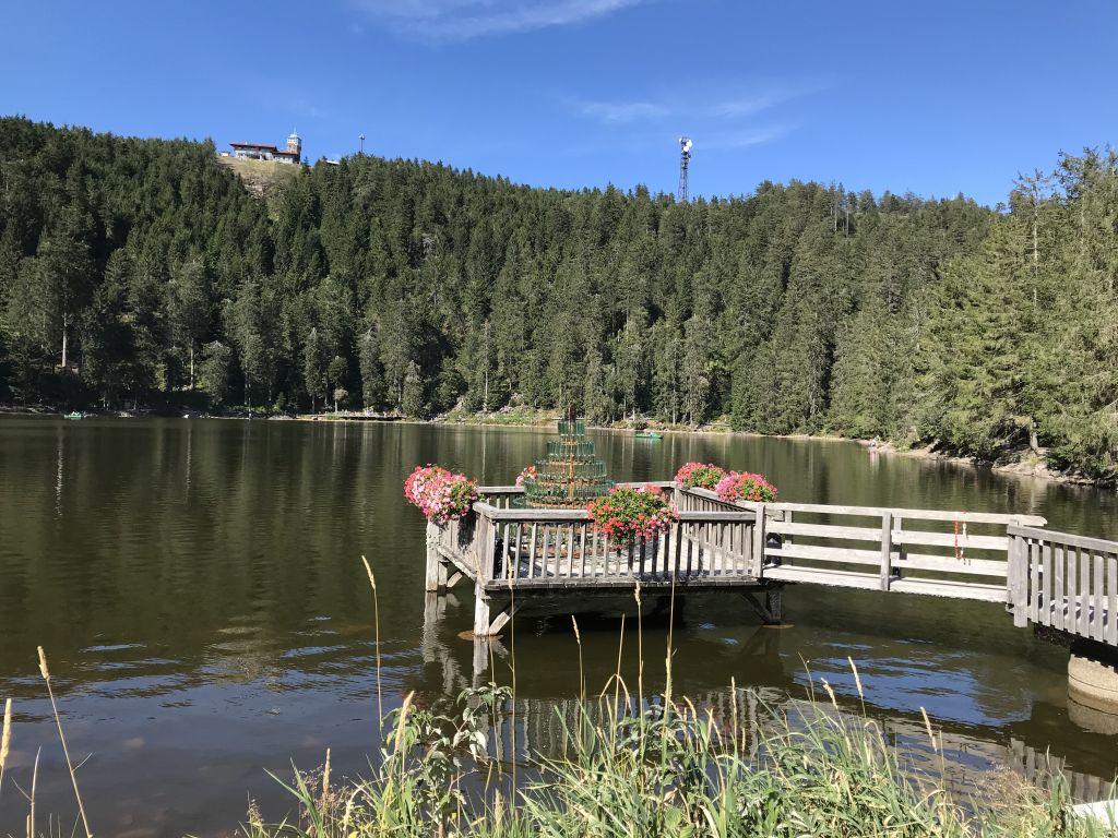 Blick vom Berghotel Mummelsee auf die Hornisgrinde