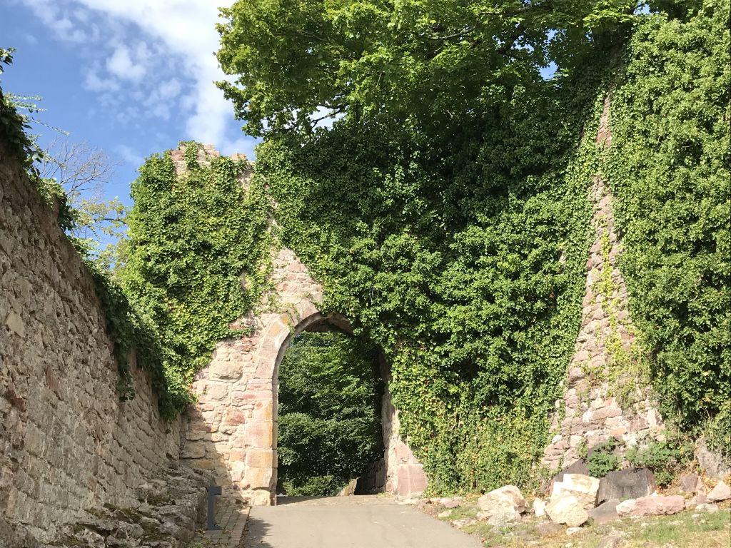 Torzwinger der Ruine Yburg