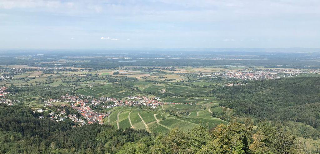 Blick von der Ruine Yburg auf das Rebland und die Rheinebene