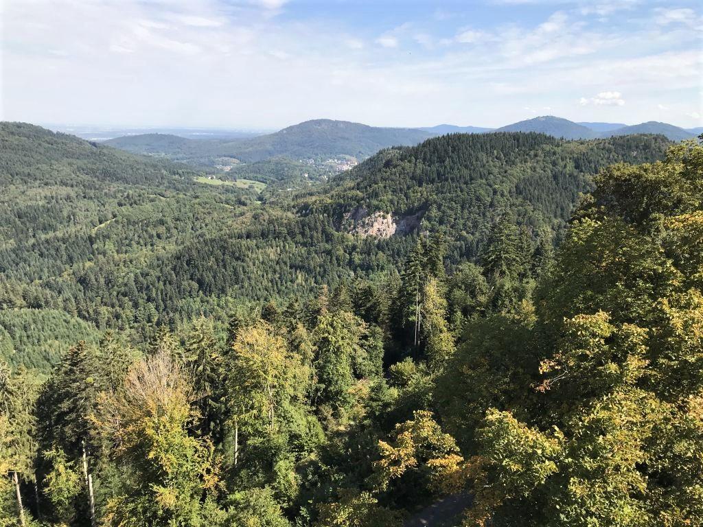 Blick von der Yburg in den Nordschwarzwald