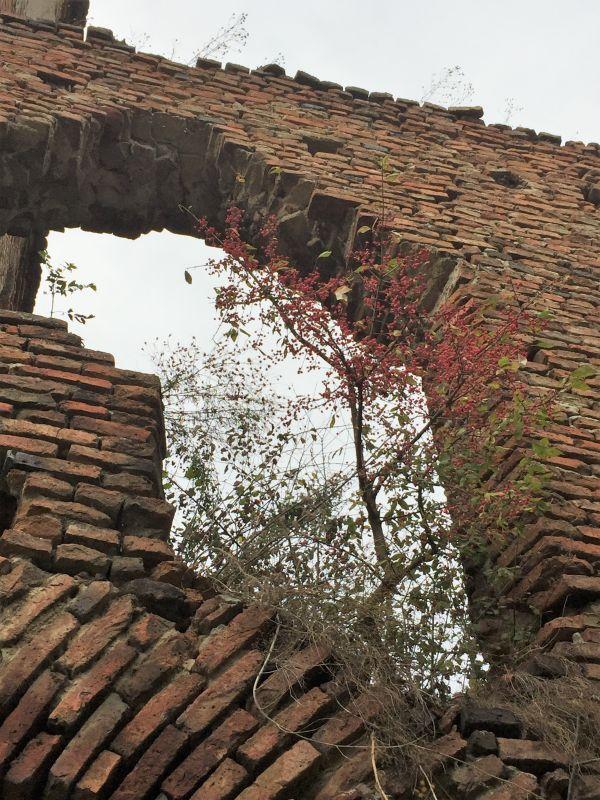 Ziegelmauer der Stolzenburg