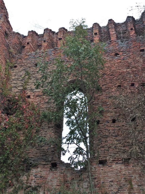 Mauerausschnitt mit gotischem Fenster der Westfassade des Saalbaus auf der Stolzenburg