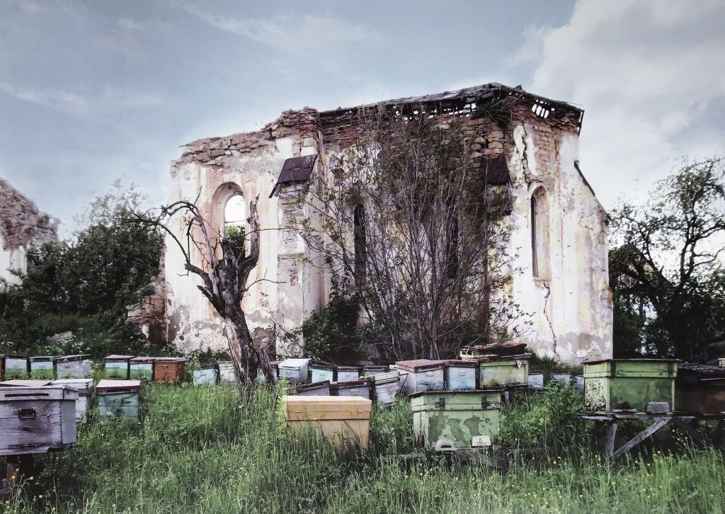 Bienenstoecke vor der Ruine der evangelischen Kirche in Senndorf Siebenbuergen aus dem Bildband Stillleben nach dem Exodus von Peter Jacobi