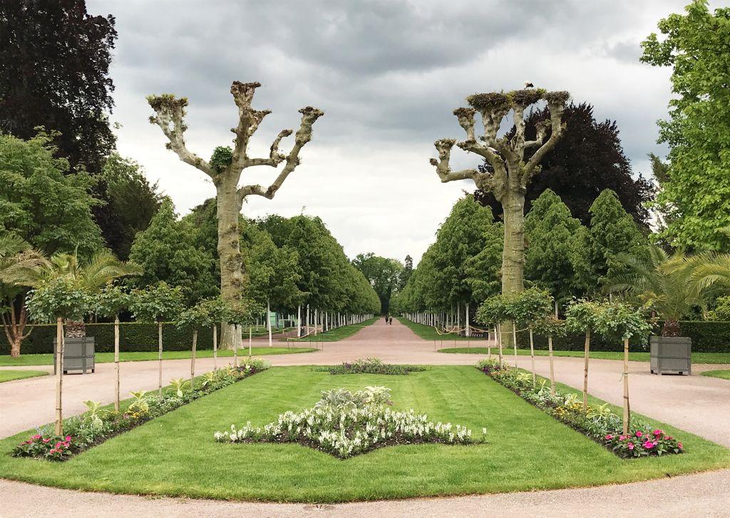 Parc de l'Orangerie in Strasbourg