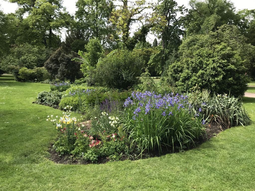 bluehende Beete im Parc de l'Orangerie in Strasbourg