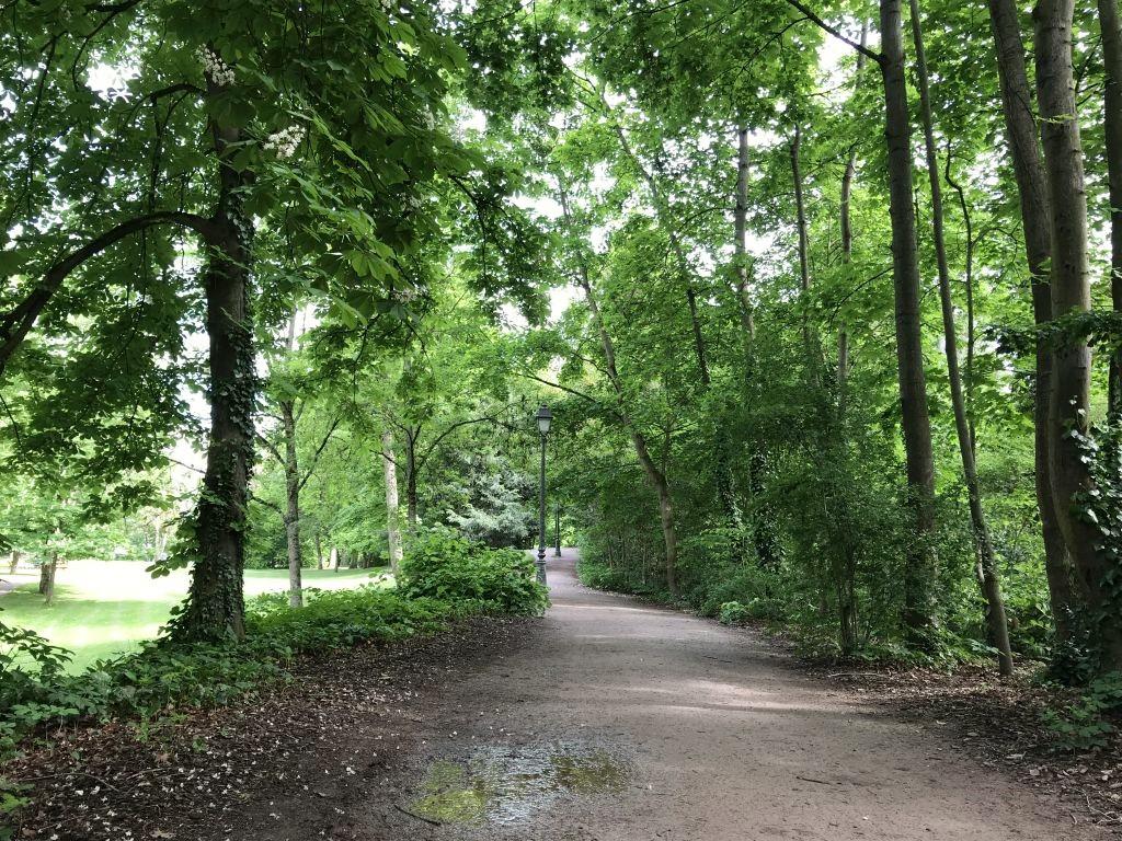 Weg im Parc de l'Orangerie in Strasbourg