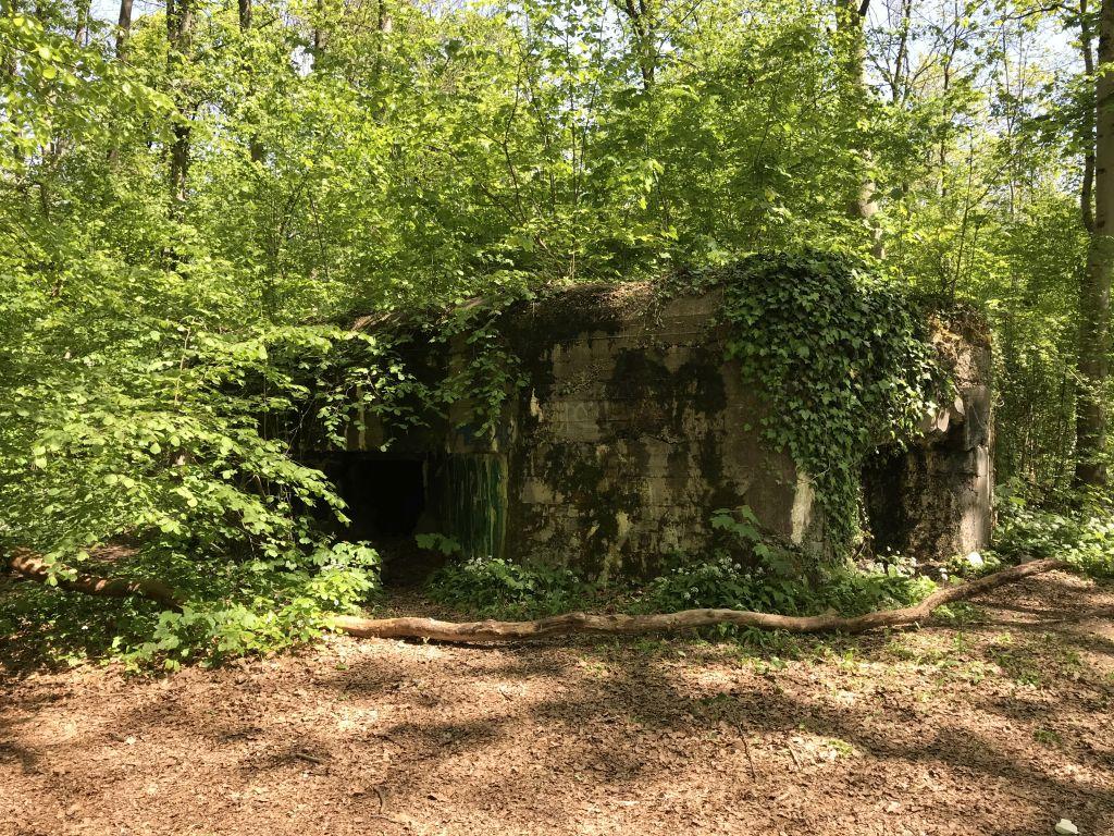 ehemaliger Bunker im Wald von Robertsau