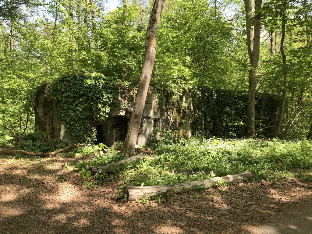 ehemaliger Bunker im Foret de la Robertsau