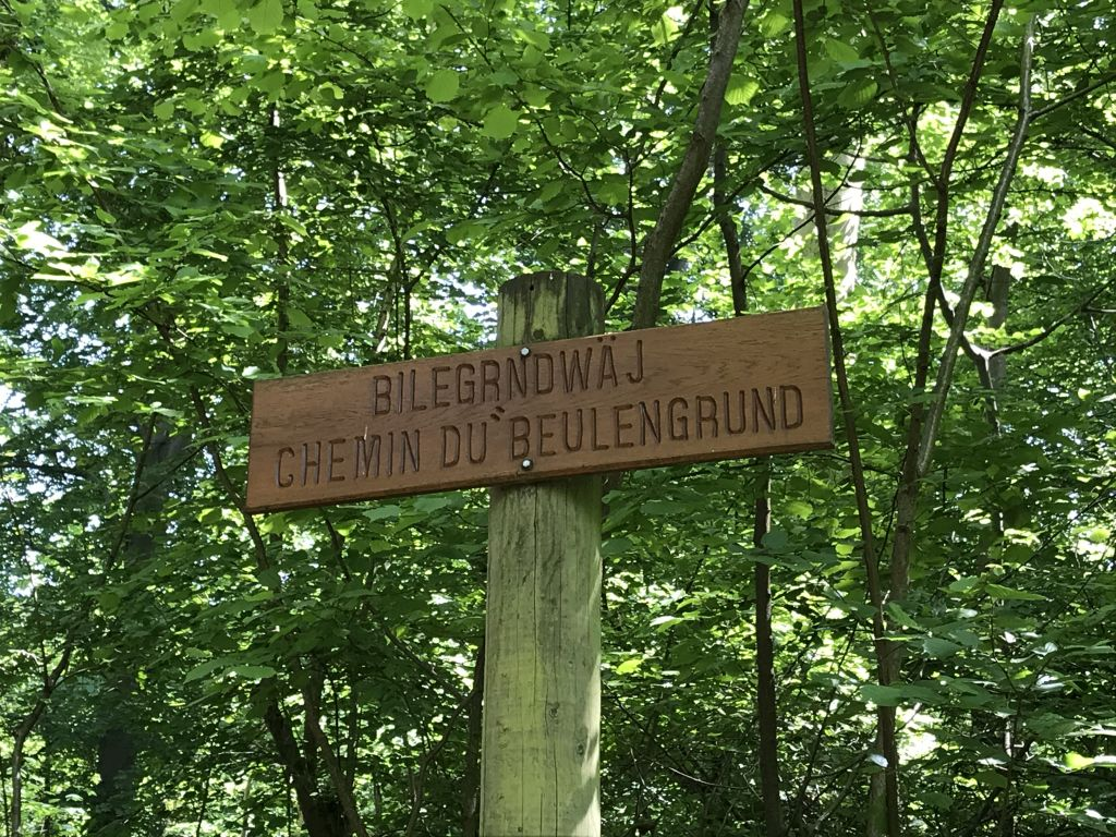 Wegschild Chemin du Beulengrund Foret de la Robertsau